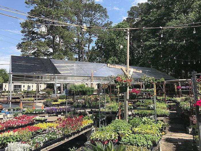 New Appalachian greenhouse