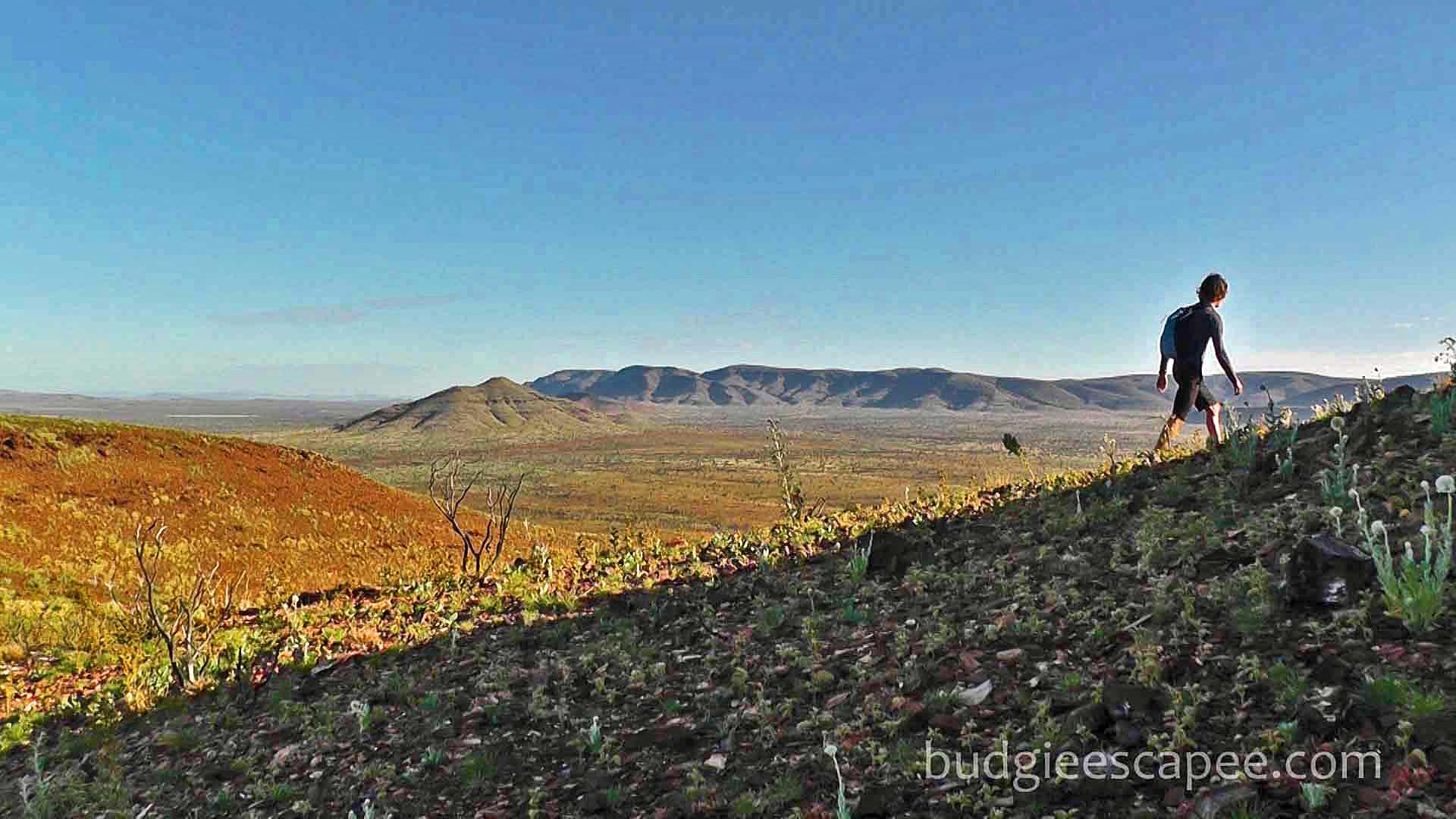 Mt Bruce