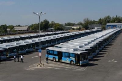 Flixbus BYD