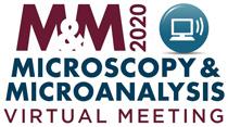 MM2020_logo