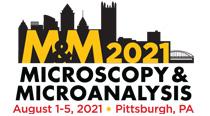 MM21 logo