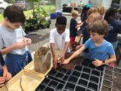 James B Edwards Elementary Greenhouse