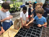 James B Edwards Elementary Greenhouse