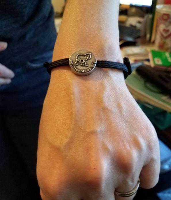 http://campaign-image.com/zohocampaigns/276712000006929004_zc_v47_braceletsideone.jpg