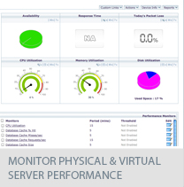 monitor physical and virtual server performance