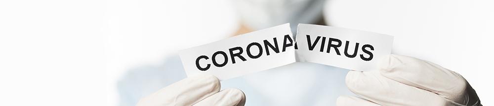 corona Virus Destilaria