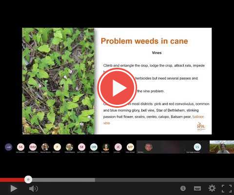 Weedswebinar