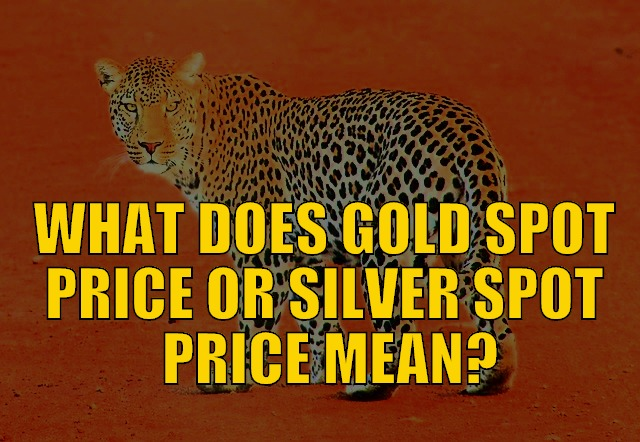 What Does Gold Spot Price (Or Silver Spot Price) Mean?